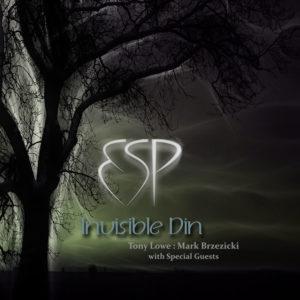ESP Invisible Din